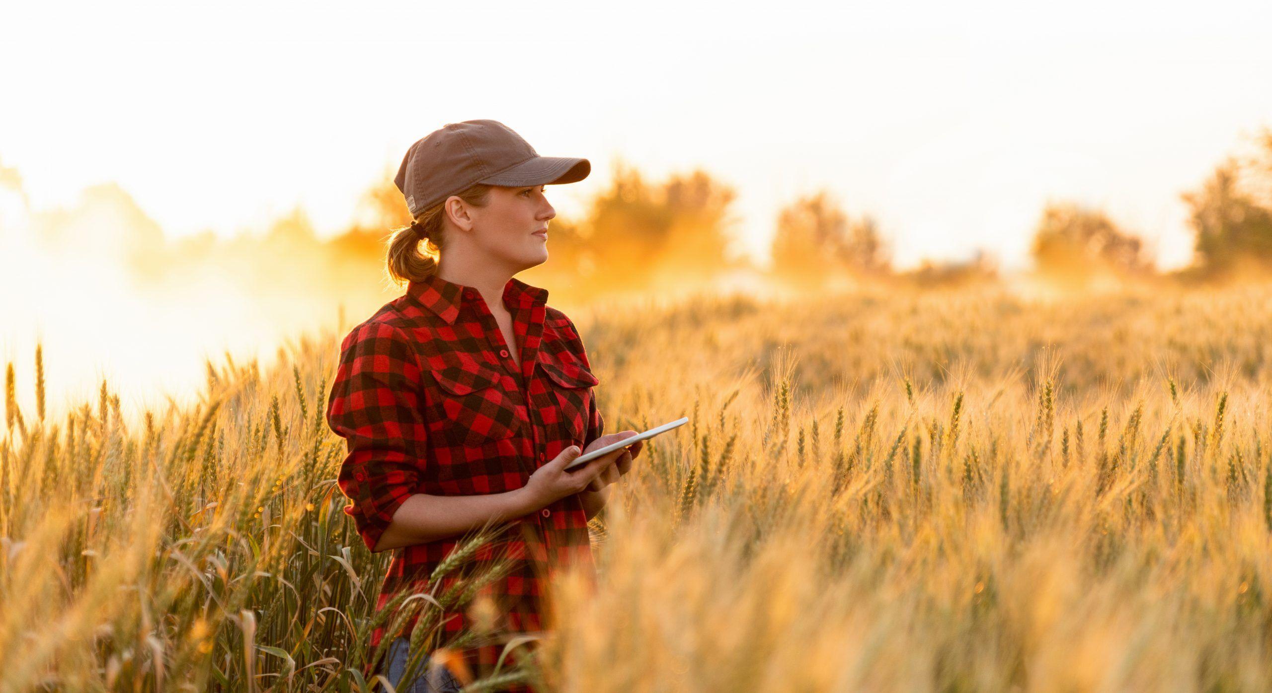 CA Ressources Humaines accompagne un leader de l'agro